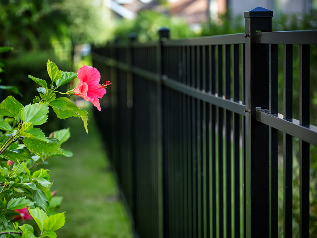 Your Home Could Use a Brand-New Fence